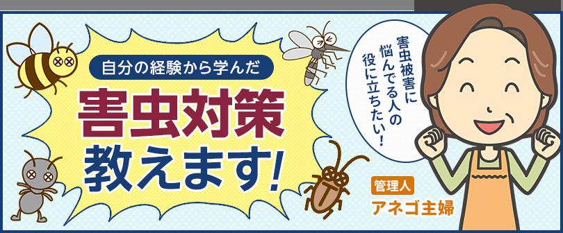 害虫対策教えます